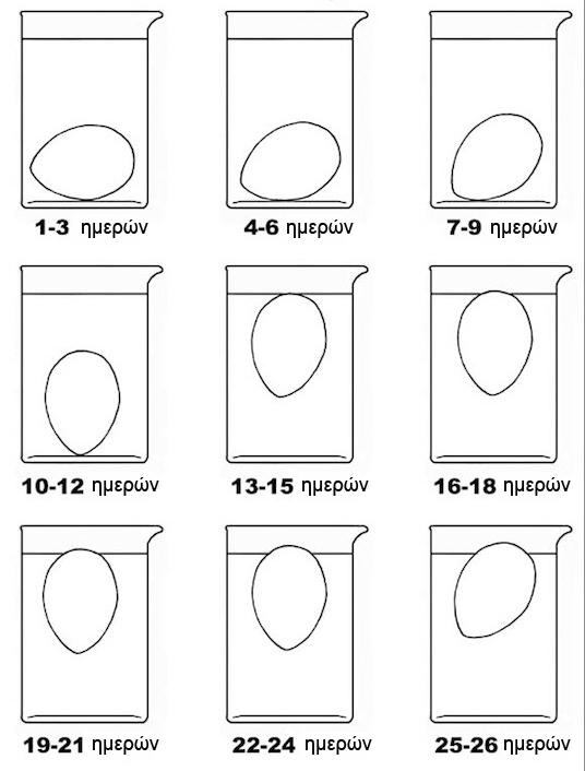 τεστ-για-φρεσκα-αυγα